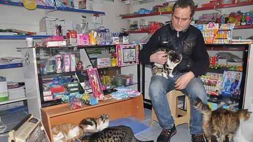 Dogilike.com :: ตุรกีโดนพายุหิมะถล่ม และนี่คือวิธีช่วยหมาแมวจรจัดที่ทำให้ทั่วโลกยิ้ม !!