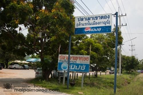 Dogilike.com :: กอดหมอกขาว ฟินยาวๆกับร้านอาหาร ที่พัก ที่เที่ยวพาน้องหมาเข้าได้ จ.กาญจนบุรี !!