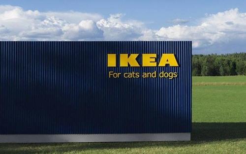 Dogilike.com :: มาตามคำเรียกร้อง! IKEA เปิดตัวเฟอร์นิเจอร์สำหรับหมาแมวโดยเฉพาะ