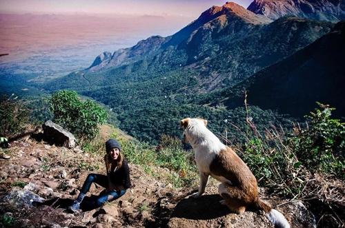 Dogilike.com :: รักเปลี่ยนชีวิต! สุนัขขี้กลัวจากแอฟริกา วันนี้กลายเป็นสุนัขที่ชื่นชอบการผจญภัย