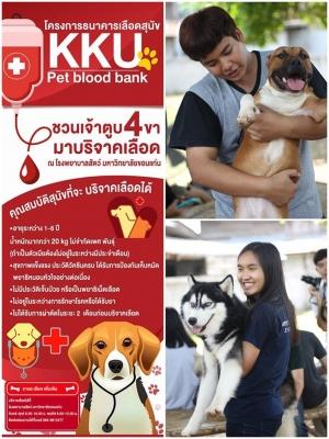 Dogilike.com :: ม.ขอนแก่น ชวนเจ้าของพาสุนัขและแมวร่วมบริจาคเลือดช่วยเหลือสัตว์ป่วย