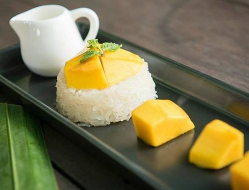 Dogilike.com :: กินเพลินเดินเที่ยว จ.สมุทรปราการ กับร้านอาหาร ที่พัก ที่เที่ยวพาน้องหมาเข้าได้ !!