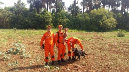 Dogilike.com :: สุนัขฮีโรนำทางทีมกู้ภัยช่วยหนูน้อยวัย 11 เดือนเดินหลงเข้าป่าทึบ !