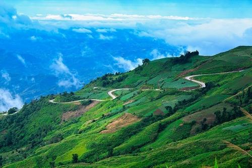 Dogilike.com :: กอดภูเขา ชมป่าเขียวที่จ.เพชรบูรณ์ กับร้านอาหาร ที่พัก ที่เที่ยวพาน้องหมาเข้าได้ !!