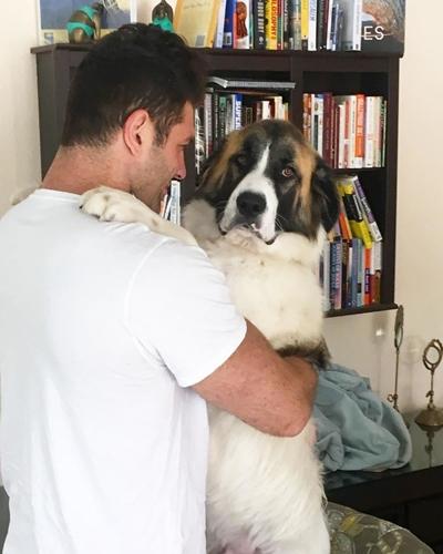 Dogilike.com :: หลงรัก! หนุ่มล่ำกล้ามโตผู้ชอบช่วยเหลือสัตว์และรับเลี้ยงหมาแมวมากถึง 9 ตัว