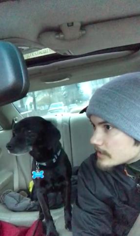 Dogilike.com :: ทิ้งไม่ลง! หนุ่มใจดียอมไปส่งพิซซ่าช้าเพราะหยุดรถช่วยสุนัขหลงทาง