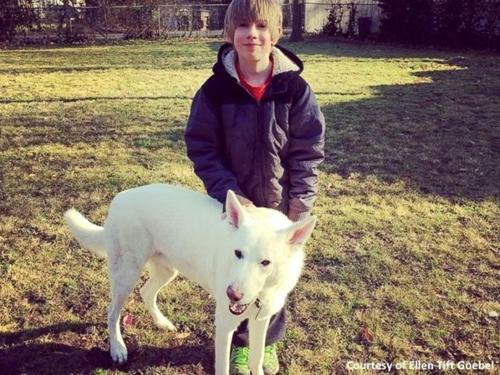 Dogilike.com :: นาทีสุดซึ้ง! เด็กชายร้องไห้ดีใจหลังได้พบหน้าสุนัขของเพื่อนบ้านอีกครั้ง (มีคลิป)
