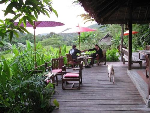 Dogilike.com :: ต้องมนต์เมืองสามหมอก จ.แม่ฮ่องสอน กับร้านอาหาร ที่พัก ที่เที่ยวพาน้องหมาเข้าได้ !!
