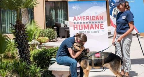 Dogilike.com :: กว่า 6 ปีที่รับใช้ชาติ วันนี้สุนัขทหารปลดเกษียณได้อยู่ในอ้อมกอดทหารสาวผู้จูงอีกครั้ง!