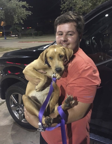Dogilike.com :: หนุ่มมะกันไม่สนคำเตือน เสี่ยงชีวิตช่วยสุนัขรอดตายจากพายุฮาร์วีย์ !