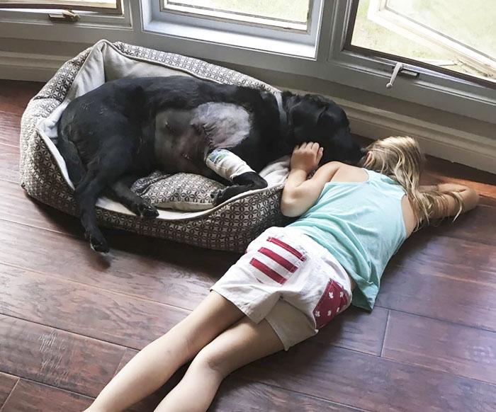 Dogilike.com :: ก็ใจมันรัก! หญิงสาวเชิดใส่ หลังถูกห้ามไม่ให้เลี้ยงเด็กร่วมกับน้องหมา