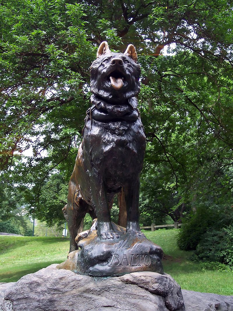 Dogilike.com :: ตามมาดูกัน! 10 อนุสาวรีย์สุนัขรอบโลก และเรื่องราวที่ทำให้พวกเขาเป็นที่จดจำ