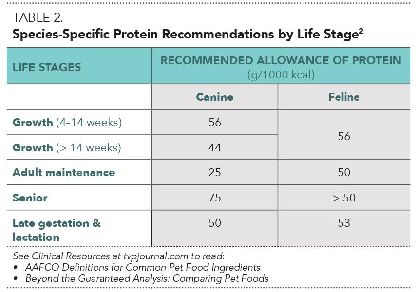 Dogilike.com :: ให้น้องหมากินอาหารที่มีโปรตีนสูงเกินไป จะส่งผลเสียอย่างไรบ้าง