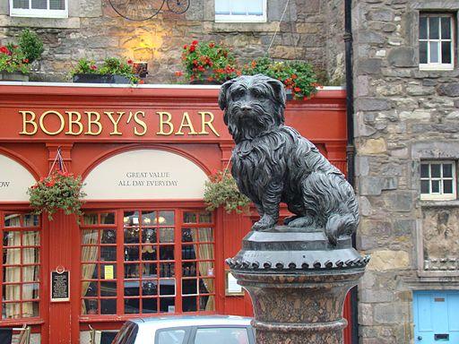 Dogilike.com :: 7 น้องหมาชื่อดังที่มีเรื่องราวสุดประทับใจ
