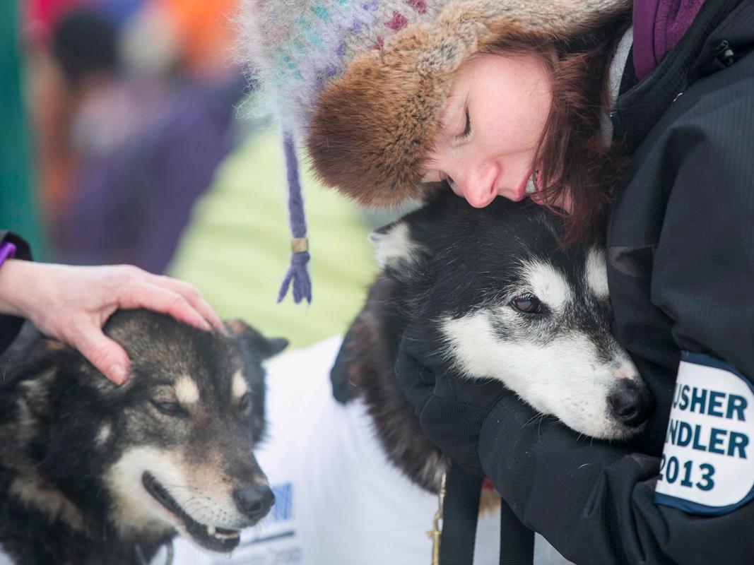 Dogilike.com :: 5 เรื่องดี ๆ ที่น้องหมาทำแล้วได้บุญ