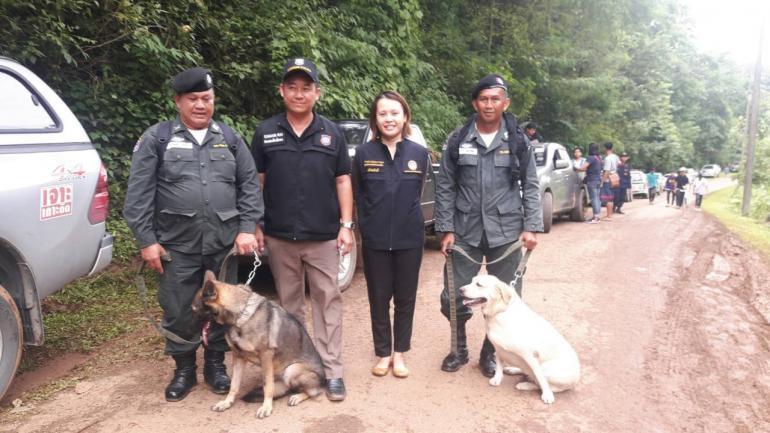 Dogilike.com :: ตามติดภารกิจทีมสุนัขตำรวจช่วยเหลือค้นหาผู้สูญหาย ถ้ำหลวง-ขุนน้ำนางนอน