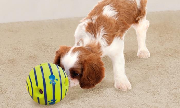 Dogilike.com :: 5 ของเล่นน้องหมาสุดไฮเทคที่ทาสหมาต้องมี !!