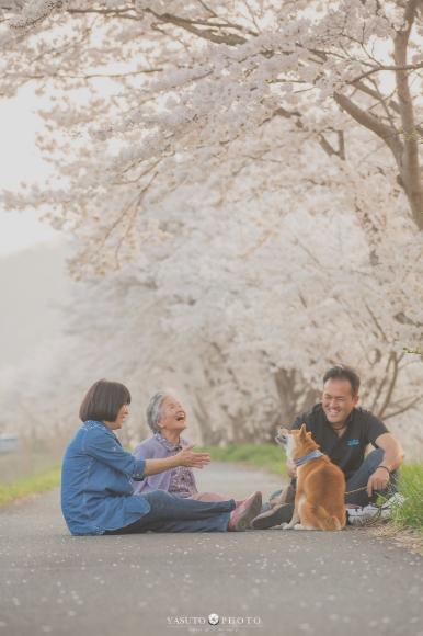 Dogilike.com :: ช่างภาพชื่อดังเผยแรงบันดาลใจ จากการสูญเสียสู่เซตภาพอบอุ่นของคุณยายและน้องหมา