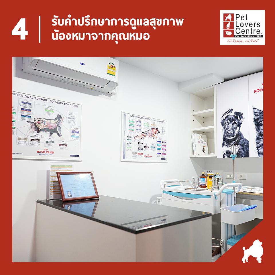 Dogilike.com :: ╒м╖╢у╨м║╣Хм 5 йтХ╖╥уХ╓╧ця║╧Им╖каркИра╬ер╢ ЮавХмД╩╙Им╩╥уХ Pet Lovers Centre
