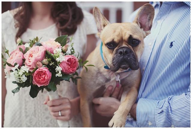 Dogilike.com :: รวมภาพหวานสุด ๆ ของเจ้าของและน้องหมาในวันแห่งความรัก