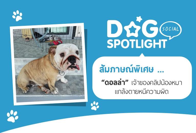 Dogilike.com :: สัมภาษณ์พิเศษ ... ดอลล่า เจ้าของคลิปน้องหมาแกล้งตายหนีความผิด