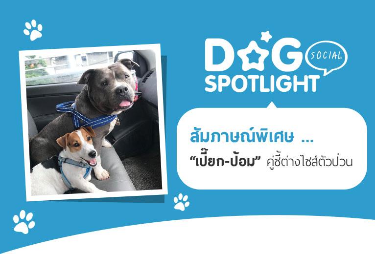 Dogilike.com :: สัมภาษณ์พิเศษ ... เปี๊ยก-ป้อม คู่ซี้ต่างไซส์ตัวป่วน