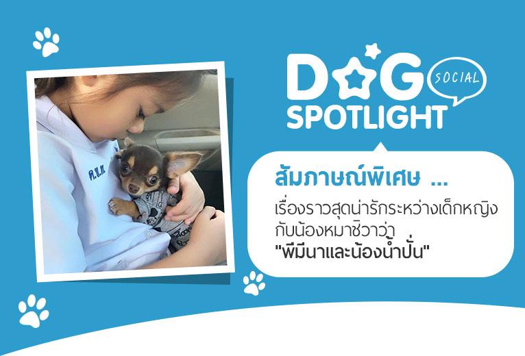 Dogilike.com :: สัมภาษณ์พิเศษ ... เรื่องราวน่ารักระหว่างเด็กหญิงกับน้องหมาชิวาว่า พี่มีนาและน้องน้ำปั่น