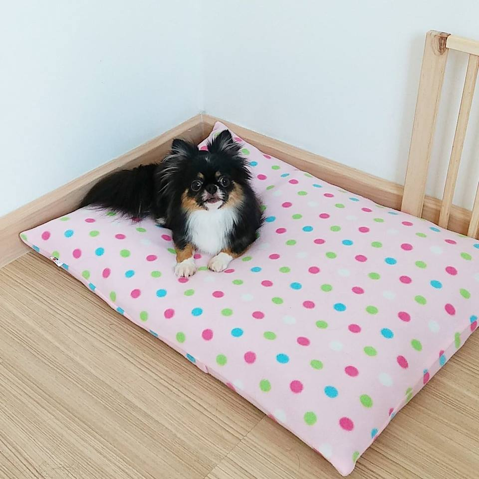 Dogilike.com :: ดูแลน้องหมาแบบชิล ๆ ด้วย หมอนที่นอนสัตว์เลี้ยงซักง่าย Puppy Love Pet Pillow