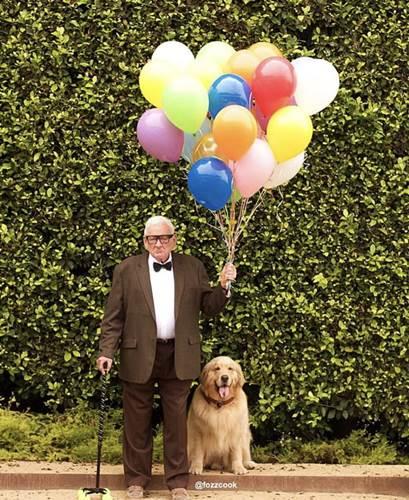 Dogilike.com :: น่ารักสุดๆ! คุณปู่จับตูบแต่งตัวฮาโลวีนตามเรื่อง UP ปู่ซ่าบ้าพลัง