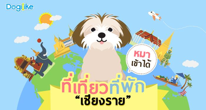 Dogilike.com :: ชวนน้องหมาท้าลมหนาว จ.เชียงราย กับร้านอาหาร ที่พัก ที่เที่ยวพาตูบเข้าได้ !!