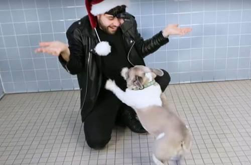 Dogilike.com :: ดีต่อใจ! หนุ่มเล่นมายากลซ่อนขนมกับสุนัข เผยมุมน่ารักช่วยให้ตูบมีบ้านใหม่ (คลิป)