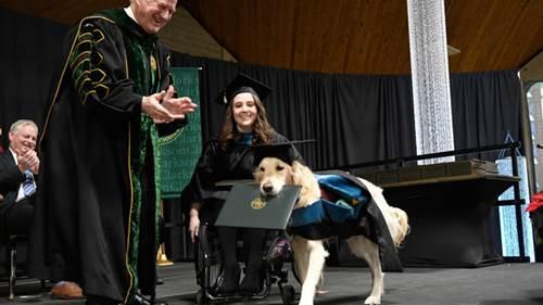 Dogilike.com :: ปลื้ม! มหาลัยในสหรัฐฯ มอบปริญญากิตติมศักดิ์ให้สุนัขช่วยเหลือ