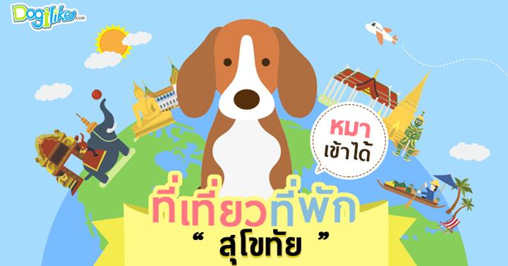 Dogilike.com :: สุโขทัย เมืองรองสุดเก๋กับกับร้านอาหาร ที่พัก ที่เที่ยวพาตูบเข้าได้ !!