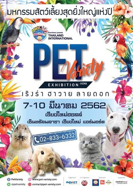 Dogilike.com :: SmartHeart presents Thailand International Pet Variety Exhibition @เชียงใหม่