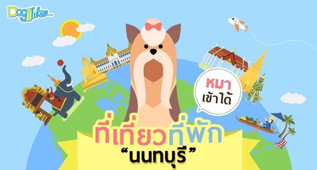 Dogilike.com :: จ.นนทบุรี กับสถานที่น่าพาน้องหมาไปเช็กอิน กินเที่ยวแบบเพลิน ๆ