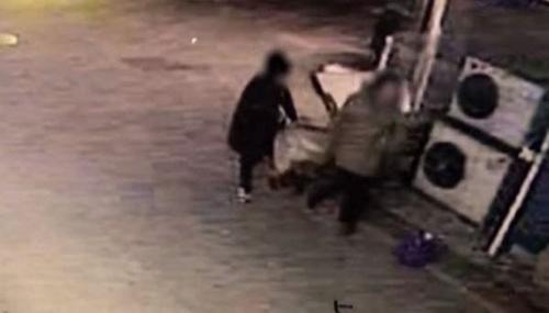 Dogilike.com :: เจ้าของจับสุนัขสูงวัยใส่กล่องทิ้งถังขยะเพราะไม่อาจทนดู หากตายต่อหน้า !
