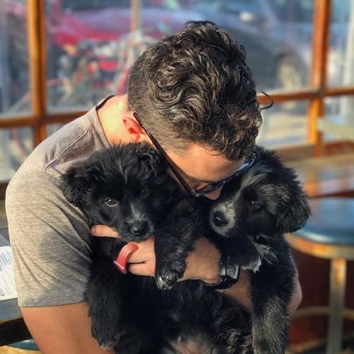 Dogilike.com :: หนุ่มเจอ 2 ลูกสุนัขถูกทิ้งกลางทะเลทราย ก่อนตัดสินใจรับเลี้ยงและพาเที่ยวไปด้วยกัน !