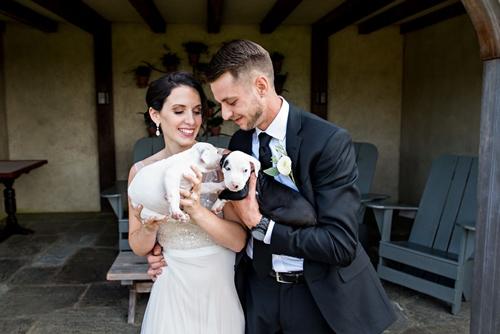 Dogilike.com :: อุ้มลูกหมาแทนดอกไม้ ! งานแต่งสุดน่ารักที่ช่วยหาบ้านให้สุนัขในศูนย์พักพิงฯ