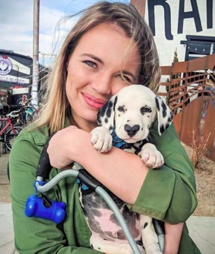 Dogilike.com :: น่ารักสุดๆ! เจ้า Wiley น้องหมาจมูกรูปหัวใจขวัญใจคนรักสัตว์ทั่วโลก