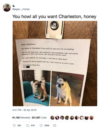 Dogilike.com :: ชื่นชม! เจ้าของตูบสูงวัยติดประกาศขอโทษเพื่อนบ้านที่สุนัขส่งเสียงหอนรบกวน