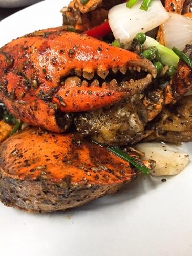 Dogilike.com :: จ.สมุทรสงคราม กับร้านอาหาร ที่พัก ที่เที่ยวพาน้องหมาเข้าได้ !!