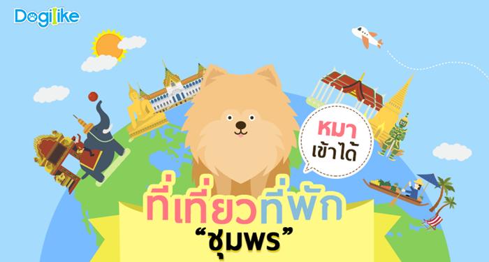 Dogilike.com :: จ.ชุมพร กับร้านอาหาร ที่พัก ที่เที่ยวพาน้องหมาเข้าได้ !!
