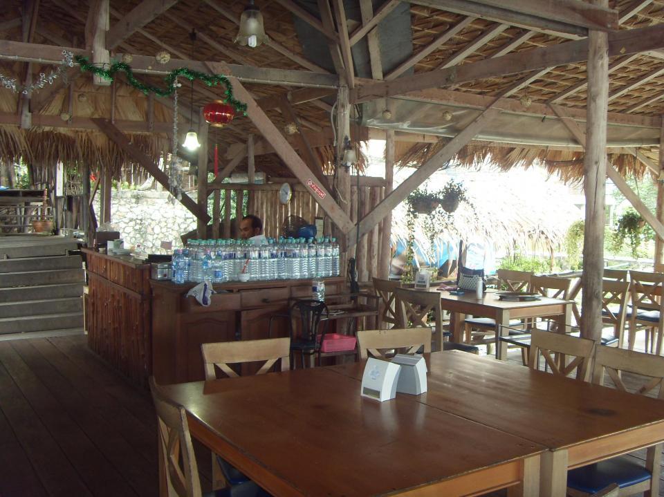 Dogilike.com :: จ.สงขลา กับร้านอาหาร ที่พัก ที่เที่ยวพาน้องหมาเข้าได้ !!