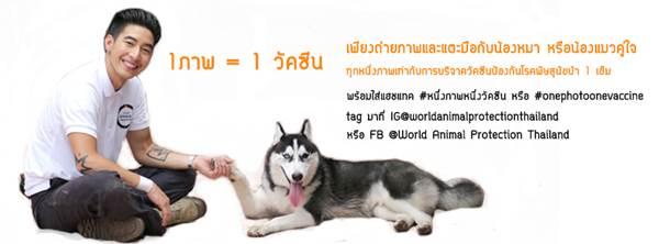 Dogilike.com :: เชิญร่วมโครงการ 1 ภาพ = 1 วัคซีน กับ World Animal Protection