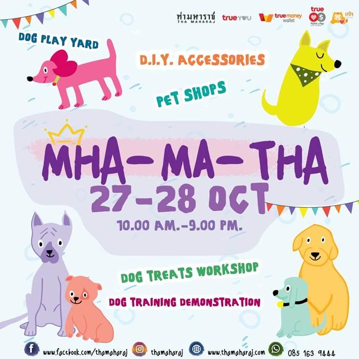 Dogilike.com :: MHA-MA-THA (หมามาท่า) ครั้งที่ 2 @ท่ามหาราช