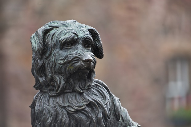 Dogilike.com :: 5 แลนด์มาร์ค รูปปั้นสุนัขที่มีชื่อเสียงระดับโลกที่นักท่องเที่ยวต้องแวะไปเยี่ยม