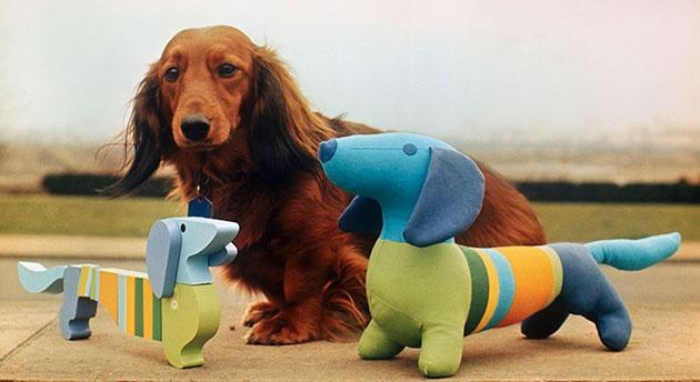 Dogilike.com :: 5 มาสคอต น้องหมาในดวงใจของคนทั่วโลก