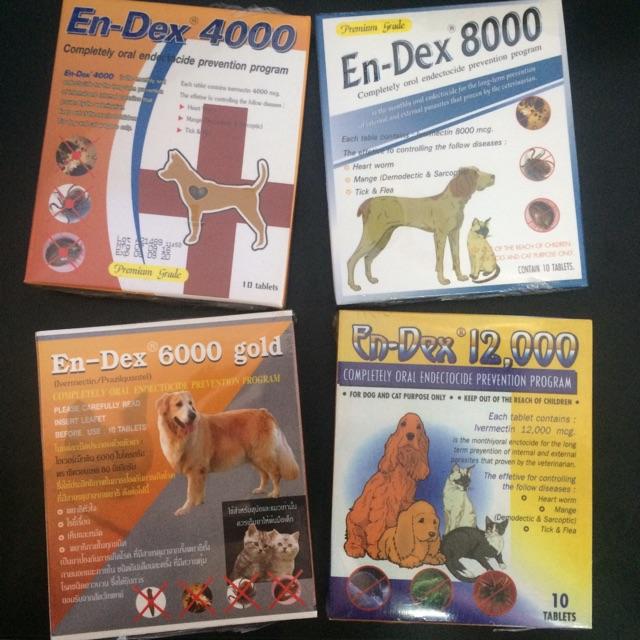 Dogilike.com :: ยาคนกับยาสัตว์ต่างกันอย่างไร