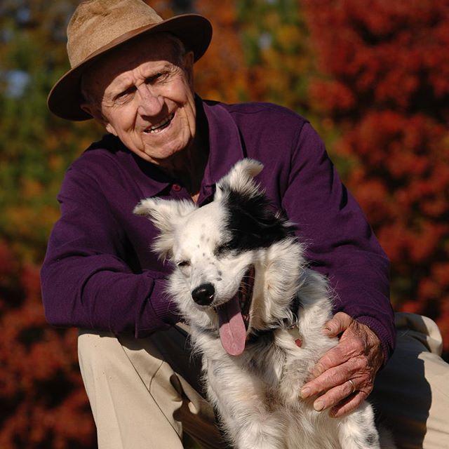 Dogilike.com :: มารู้จัก เชสเซอร์ น้องหมาที่ฉลาดที่สุดในโลกกันเถอะ