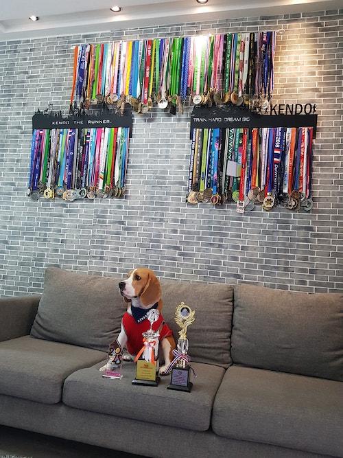 Dogilike.com :: สัมภาษณ์พิเศษ ... เคนโด้ น้องหมานักวิ่ง นักกิน และนักทำลายล้าง